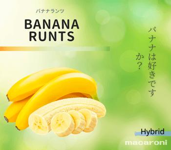 マカロニ『バナナランツ』